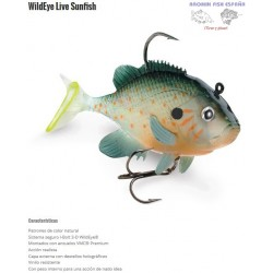 WILDEYE LIVE SUNFISH
